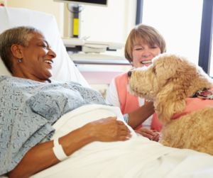 Photo of a woman in a hospital bed petting a therapy dog and smiling