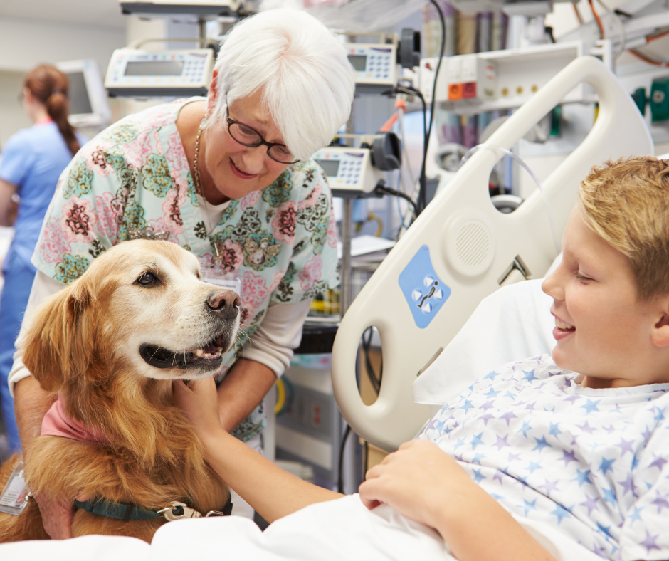 Photo of a therapy dog visiting with a child in the hospital